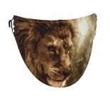 Fierce Lion Against Stormy Sky Face Masks Washable, Face Covering with Breathable Comfort Loops, Size Fit Small Face, Reusable Polyester, Nose Curved Cover Design to Breath Unisex. 14cm x 24cm
