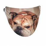 Funny Sleeping Dog Bulldog Face Masks Washable, Face Covering with Breathable Comfort Loops, Size Fit Small Face, Reusable Polyester, Nose Curved Cover Design to Breath Unisex. 14cm x 24cm